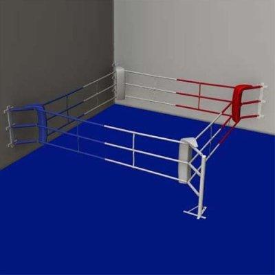 Fitness ring, Saman, 3x3m, 3 soros