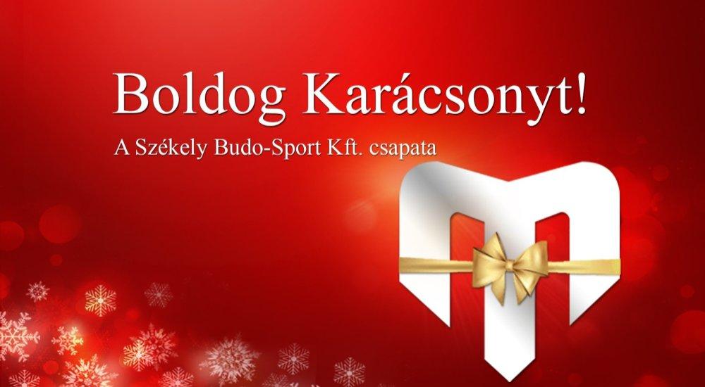A Székely Budo-Sport 2018-as éve