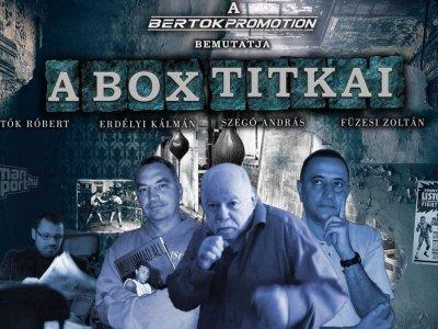 """Szerdán érkezik """"Box Titkai - Box Történelem"""" videósorozat"""