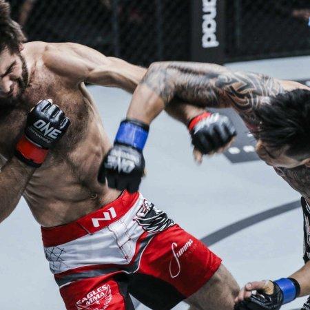 Best of MMA 2018