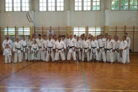 Shotokan karate nemzetközi tábor Gyulán