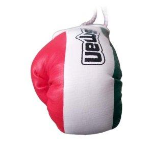 Mini Boxing Gloves, Saman, Hang-up, pair, tricolor